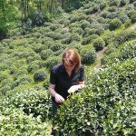 Fragen an Teefreunde: Natalia Panne
