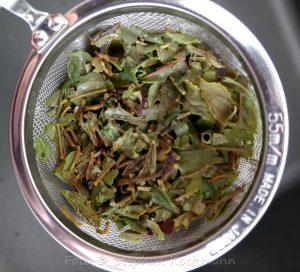 TeeGschwendner Dharamsala