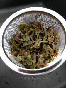 Teekampagne Gartentee Ging First Flush 2018