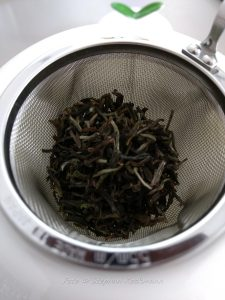TeeGschwendner Tee: Nepal Top of the World First Flush